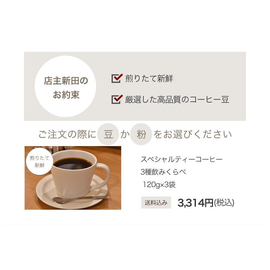 スペシャルティーコーヒー120g×3種類お試しセット【ペンギン堂】【ネコポス便・送料込】 qu-shop 10