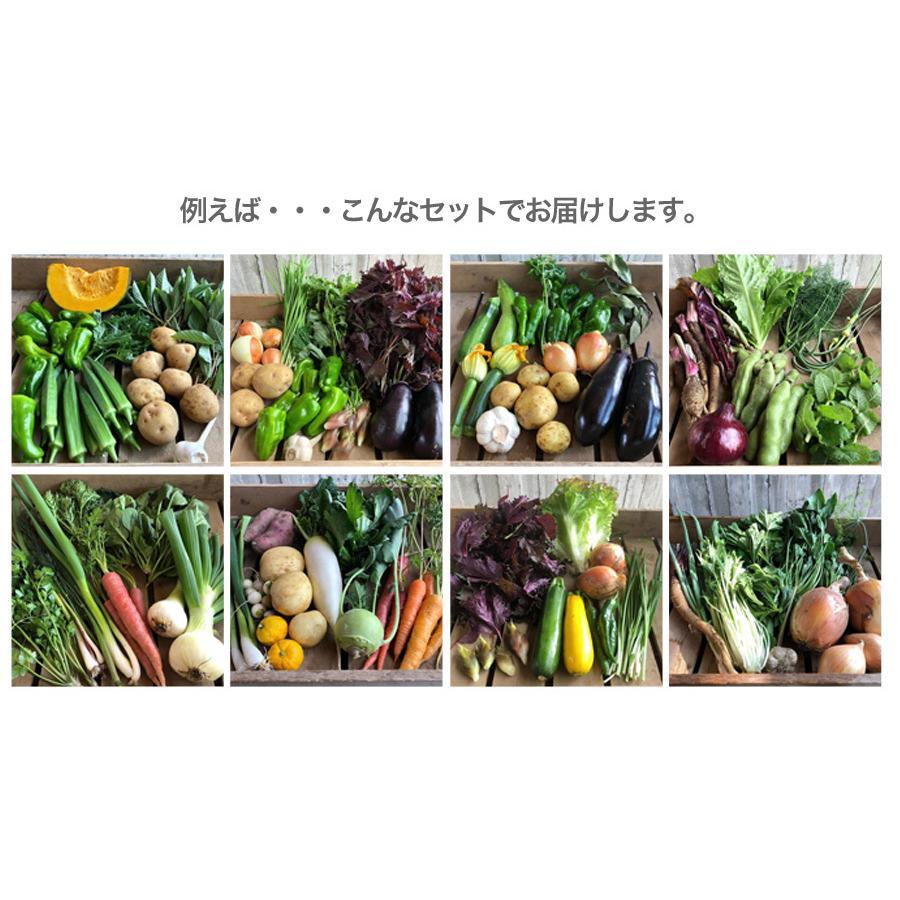 宮殿の厨房野菜セット【六月農園】|qu-shop|03