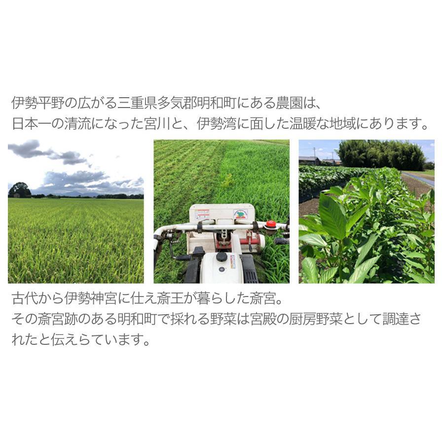 宮殿の厨房野菜セット【六月農園】|qu-shop|04
