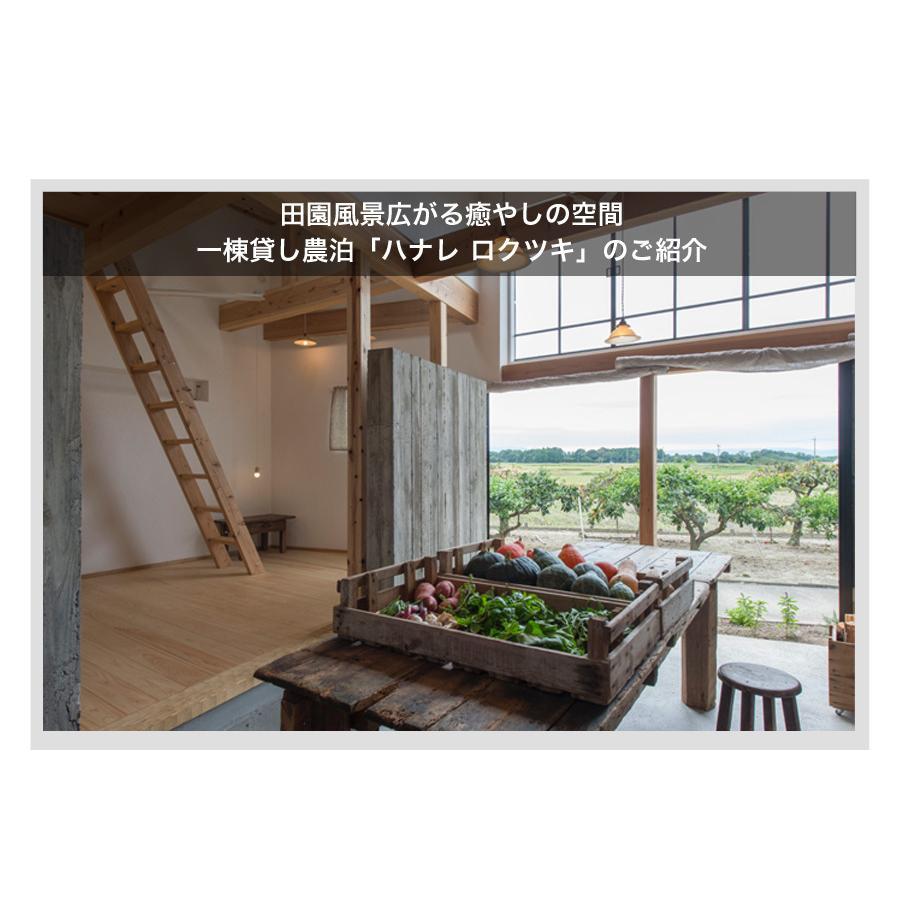 宮殿の厨房野菜セット【六月農園】|qu-shop|06