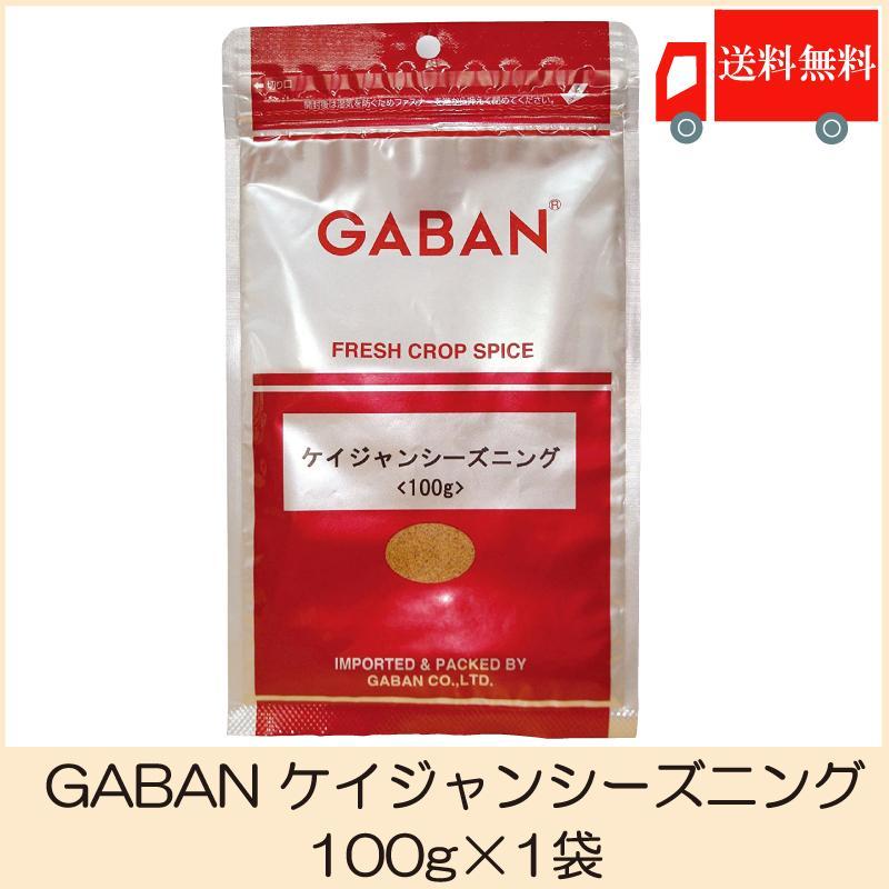 ギャバン スパイス お金を節約 GABAN ケイジャンシーズニング 100g 送料無料 流行のアイテム ポイント消化