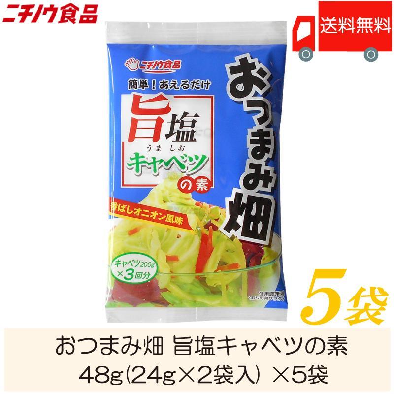 ニチノウ食品 5☆好評 おつまみ畑 旨塩キャベツの素 27g 9g×3袋入 送料無料 お気にいる ×5袋