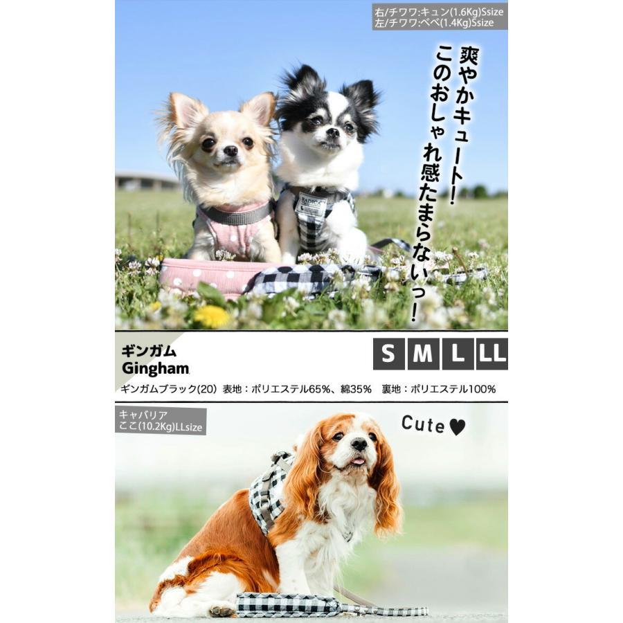 セール SALE 犬 ハーネス ラディカ RADICAハーネス(リード付き) S Mサイズ 胴輪 メール便可|radica|17