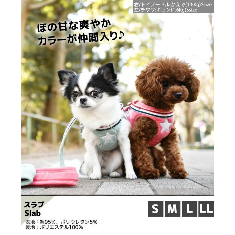 セール SALE 犬 ハーネス ラディカ RADICAハーネス(リード付き) S Mサイズ 胴輪 メール便可|radica|19