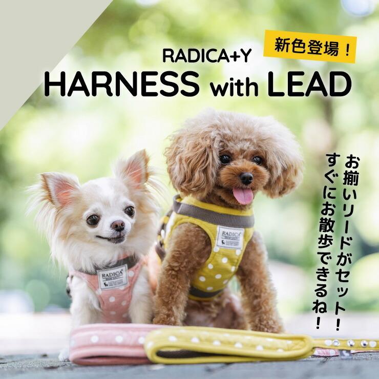 セール SALE 犬 ハーネス ラディカ RADICAハーネス(リード付き) S Mサイズ 胴輪 メール便可|radica|03