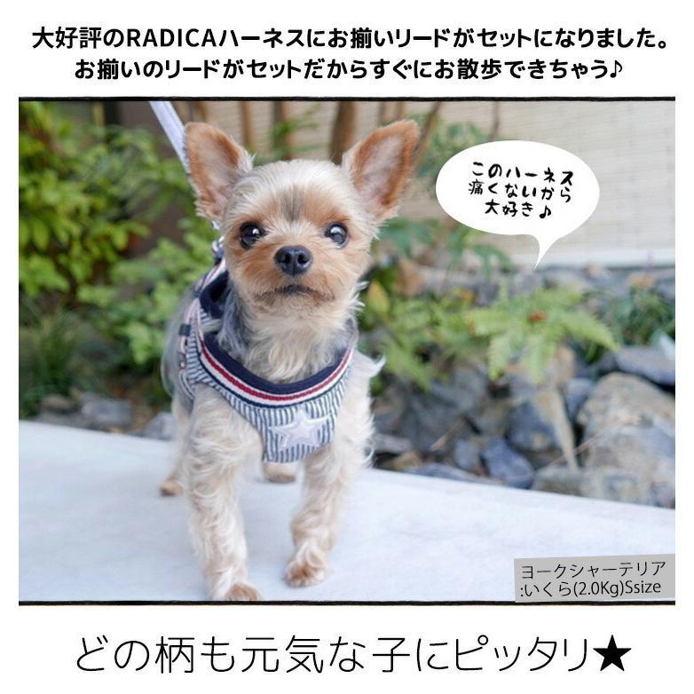 セール SALE 犬 ハーネス ラディカ RADICAハーネス(リード付き) S Mサイズ 胴輪 メール便可|radica|05