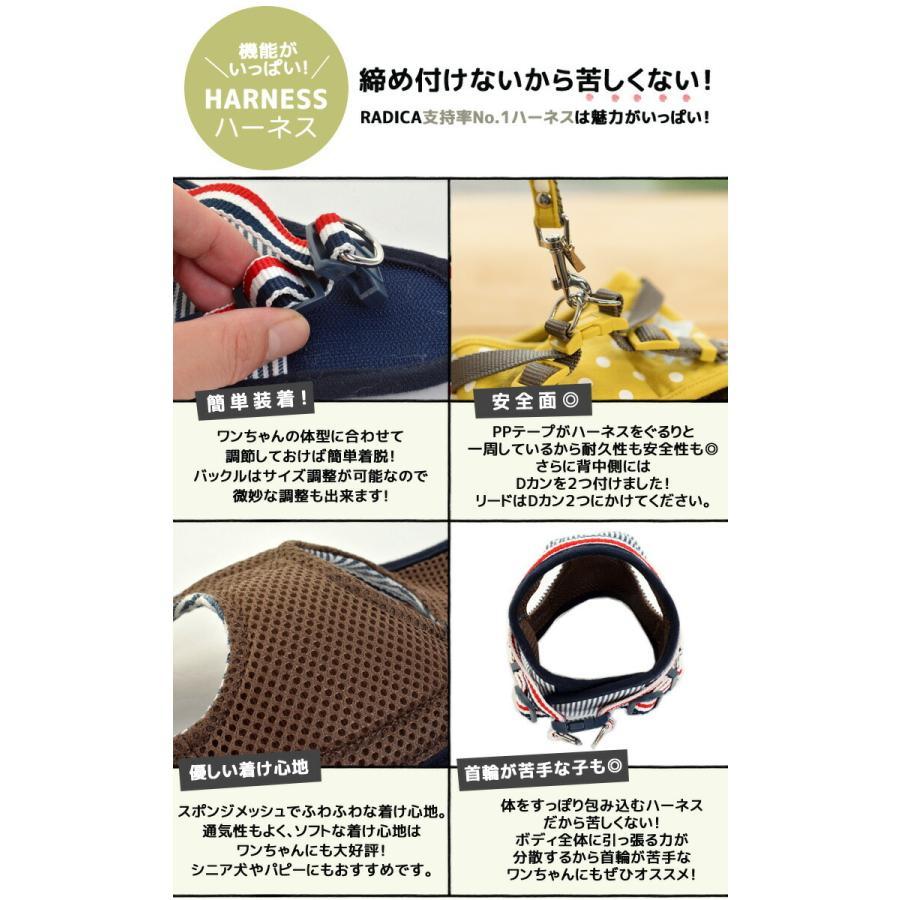 セール SALE 犬 ハーネス ラディカ RADICAハーネス(リード付き) S Mサイズ 胴輪 メール便可|radica|06