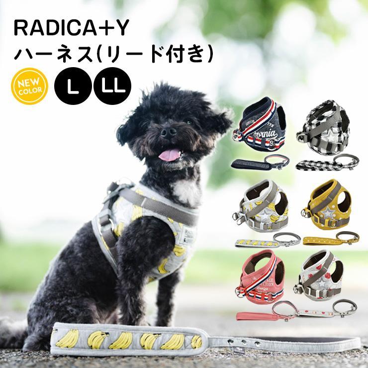 セール SALE 犬 ハーネス ラディカ RADYハーネス(リード付き)  L LLサイズ 胴輪 メール便可|radica