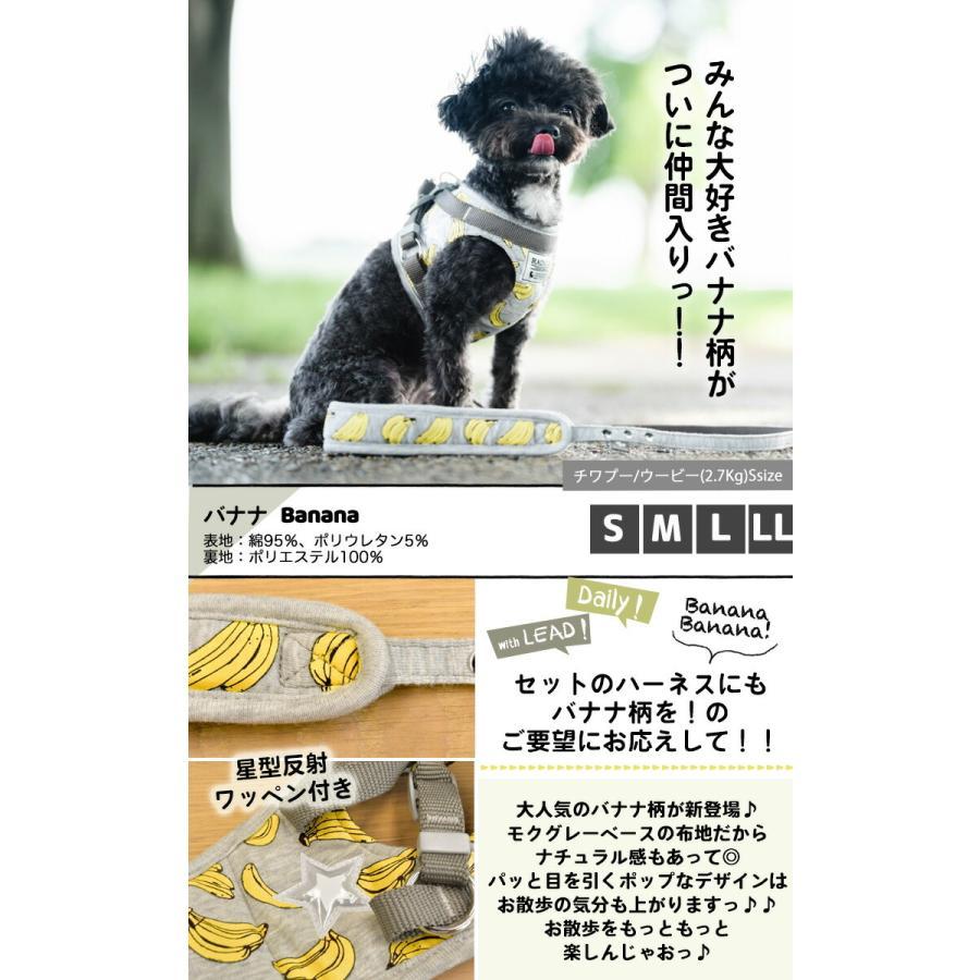 セール SALE 犬 ハーネス ラディカ RADYハーネス(リード付き)  L LLサイズ 胴輪 メール便可|radica|15