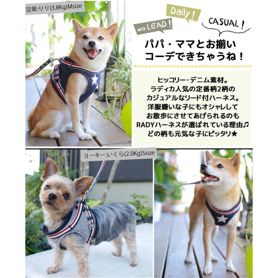 セール SALE 犬 ハーネス ラディカ RADYハーネス(リード付き)  L LLサイズ 胴輪 メール便可|radica|16