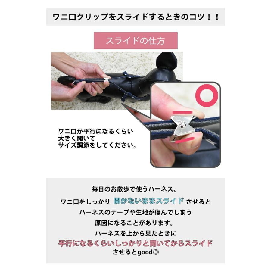 新色入荷 セール SALE 犬 ハーネス ラディカ RADY クラシックハーネス&リード 犬の胴輪 メール便可|radica|12