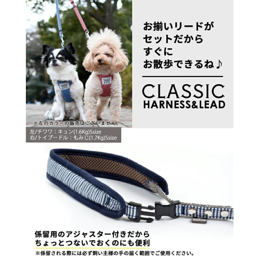 新色入荷 セール SALE 犬 ハーネス ラディカ RADY クラシックハーネス&リード 犬の胴輪 メール便可|radica|15
