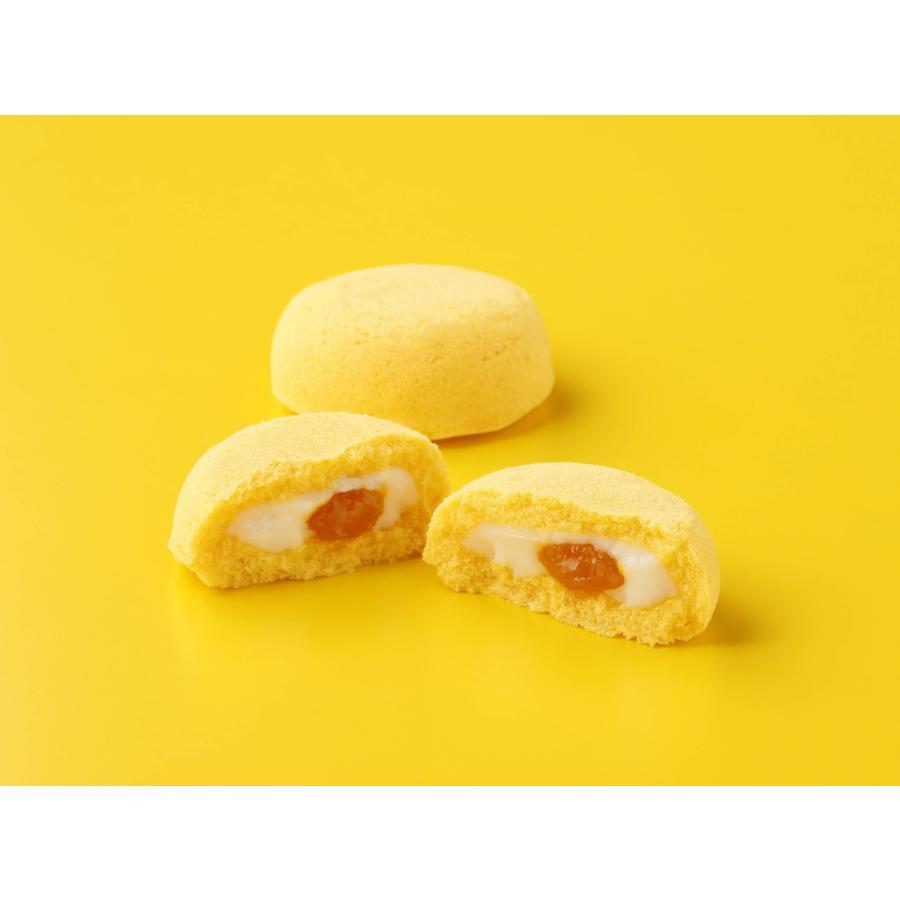いのち檬果(マンゴー)4|rag-s