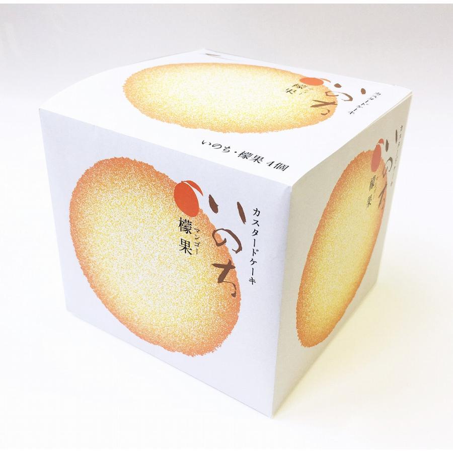 いのち檬果(マンゴー)4|rag-s|02