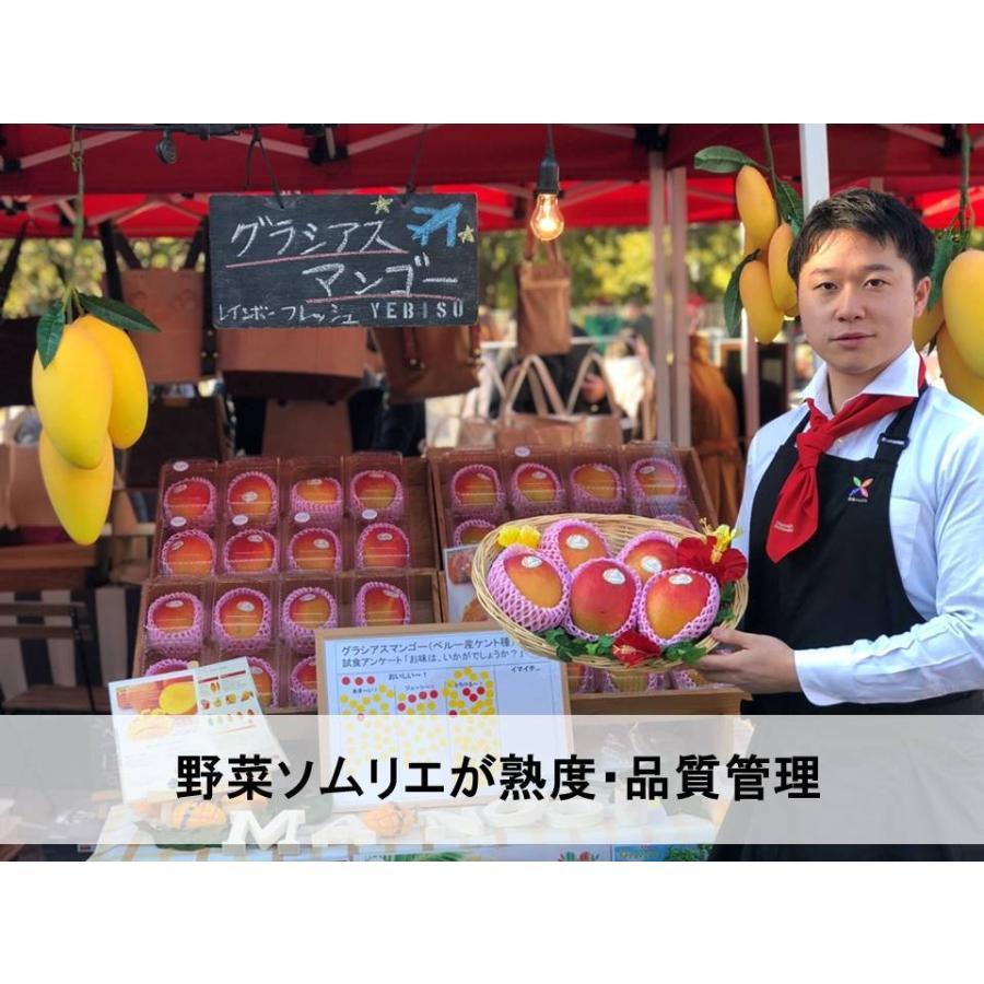 グラシアスマンゴー (ペルー産ケント種)特大12玉入(約6kg)|rainbowfresh-online|06