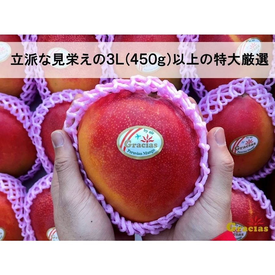 グラシアスマンゴー (ペルー産ケント種)特大4玉入(約2kg)|rainbowfresh-online|03