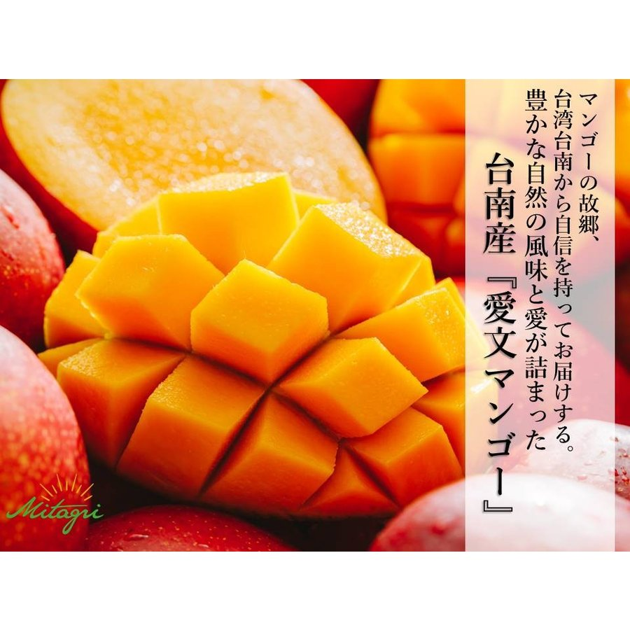【先行予約特価】【完売御礼】【数量限定】【Mitagri】台湾マンゴー(5kg 10〜16玉) rainbowfresh-online