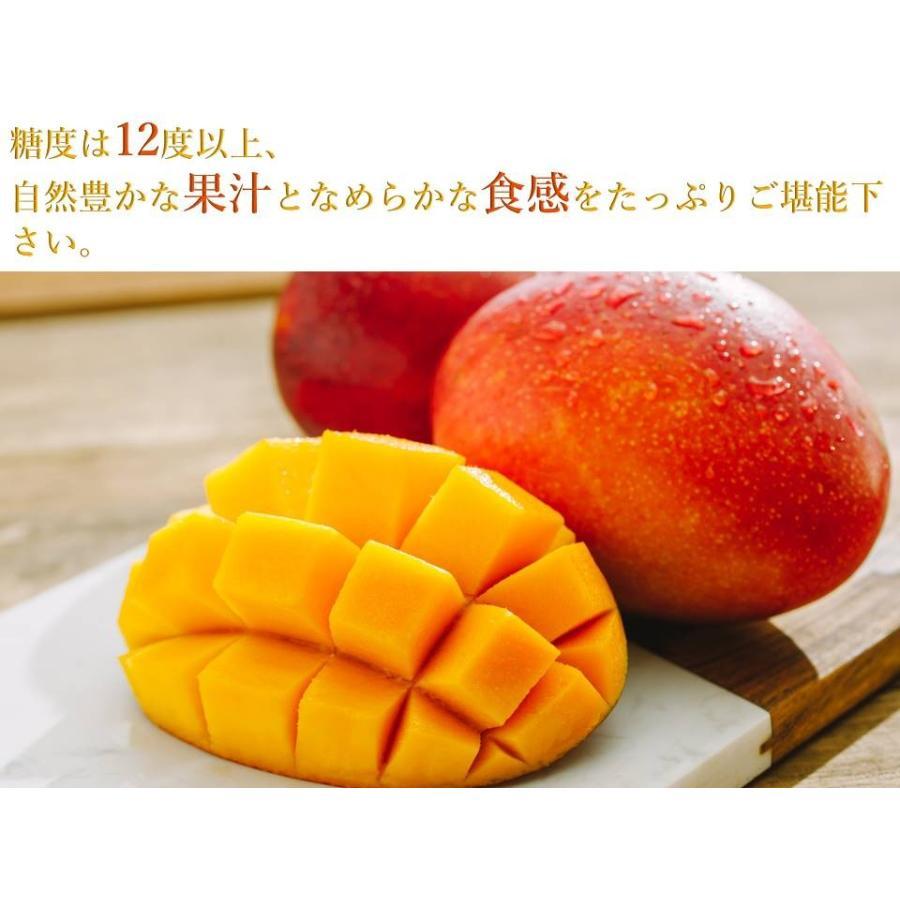 【先行予約特価】【完売御礼】【数量限定】【Mitagri】台湾マンゴー(5kg 10〜16玉) rainbowfresh-online 04