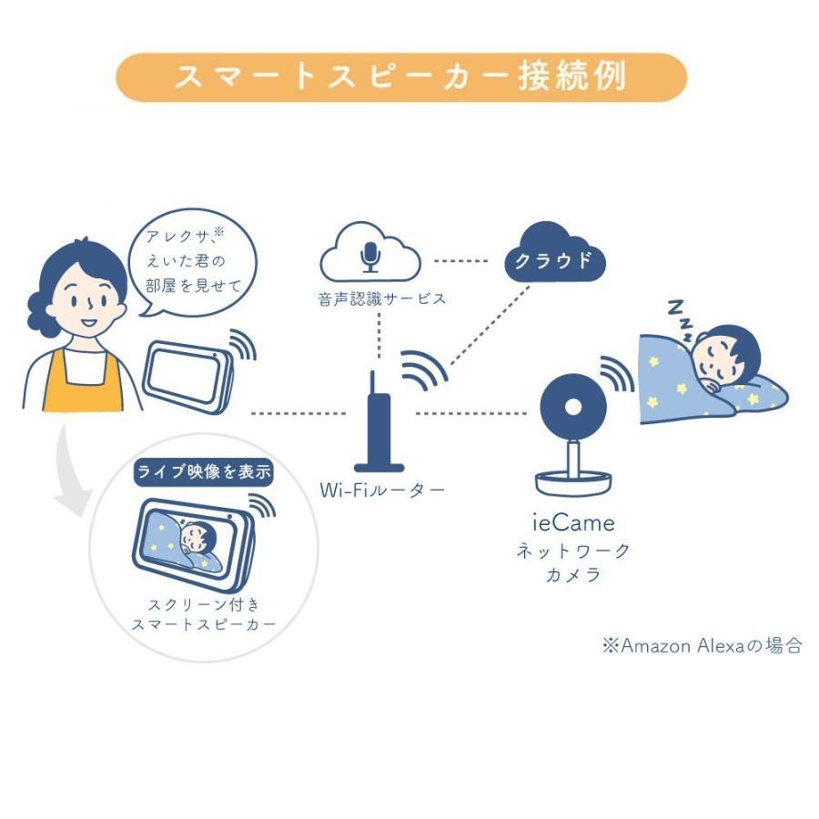 国内ブランド ieCame ネットワークカメラ RS-WFCAM3 防犯 防犯カメラ 家庭用 屋外 防水 動体検知 通知 赤外線 暗視|ratoc|10