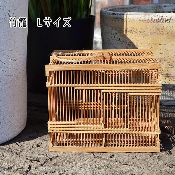 竹籠 大 OUTLET SALE 虫かご 新入荷 流行 虫籠 昔懐かしい 竹製の虫かご 繊細