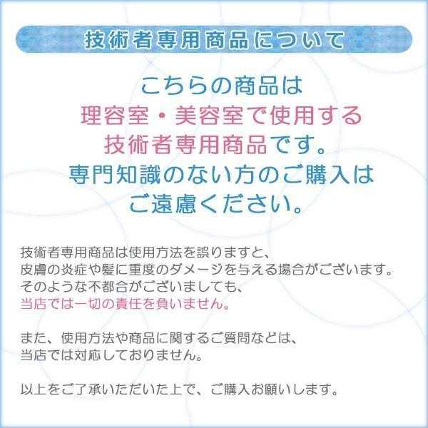 ホーユー プロフェッショナル グラマージュ スタンダードシリーズ ヘアマニキュア 150g モノトーンライン|hoyu professional glamage standard series|ray|03