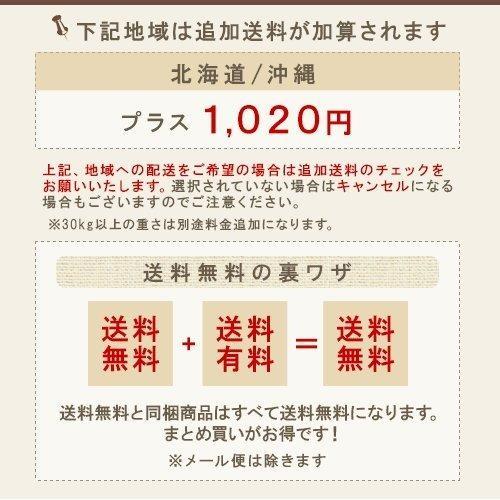 アマトラ クゥオ ヘアバス es(シャンプー)400ml+コラマスク(トリートメント)250g 計2個 お試しセット|Amatora QUO ノンシリコン|ray|11