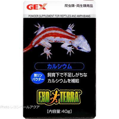 在庫有り 期間限定今なら送料無料 即OK GEX エキゾテラ カルシウム 在庫一掃売り切りセール 40g 消費期限2023 06