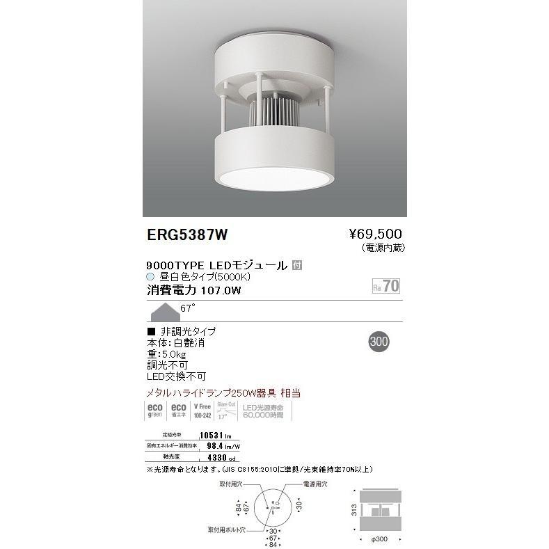 ENDO 遠藤照明 シーリングダウンライト ERG5387W ERG5387W