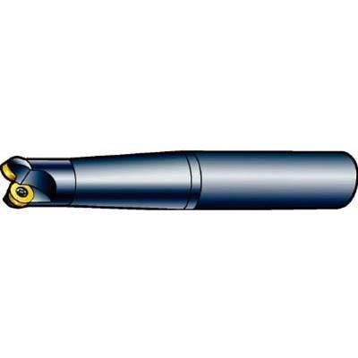 サンドビック コロミル300エンドミル R300-025A20-10M 旋削・フライス加工工具・ホルダー