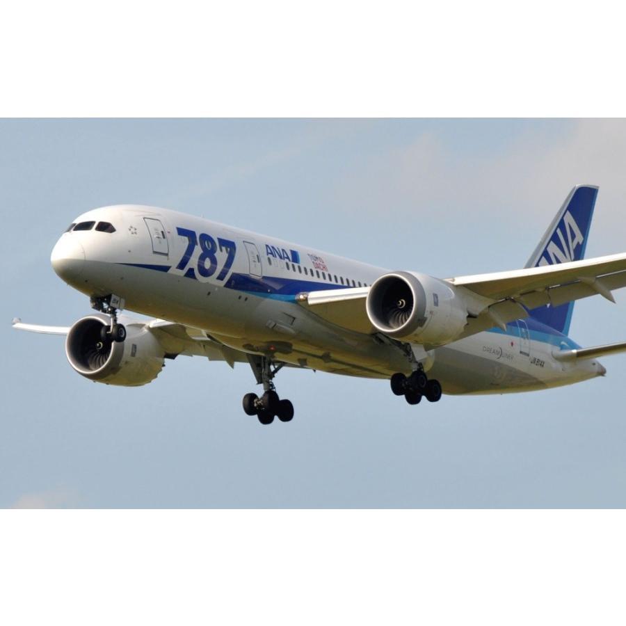 絵画風 壁紙ポスター Ana ボーイング 787 8 ドリームライナー Ja814a 11年運航開始 次世代中型ジェット旅客機 全日空 87 024w1 ワイド版 921mm 576mm 87 024w1 レアルインターショップ 通販 Yahoo ショッピング