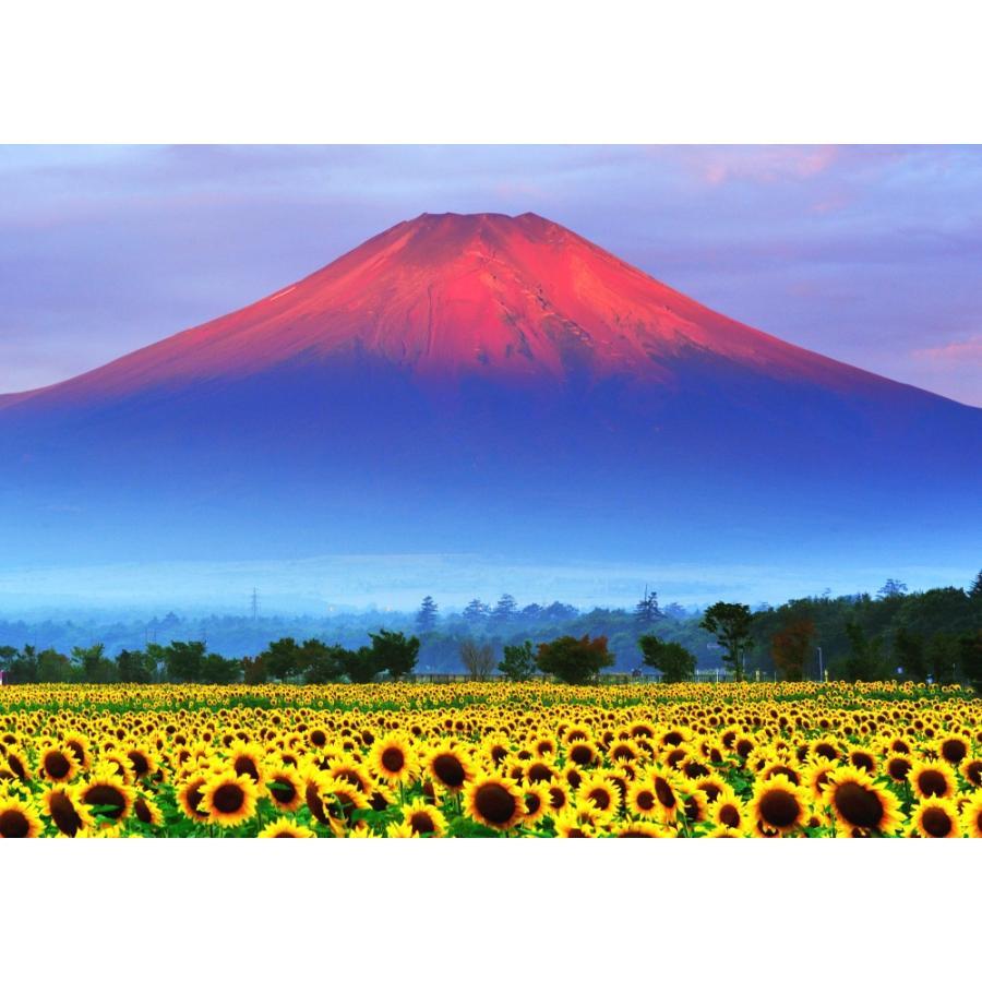 絵画風 壁紙ポスター 赤富士 朝焼けの富士山と向日葵畑 ひまわり 幸運