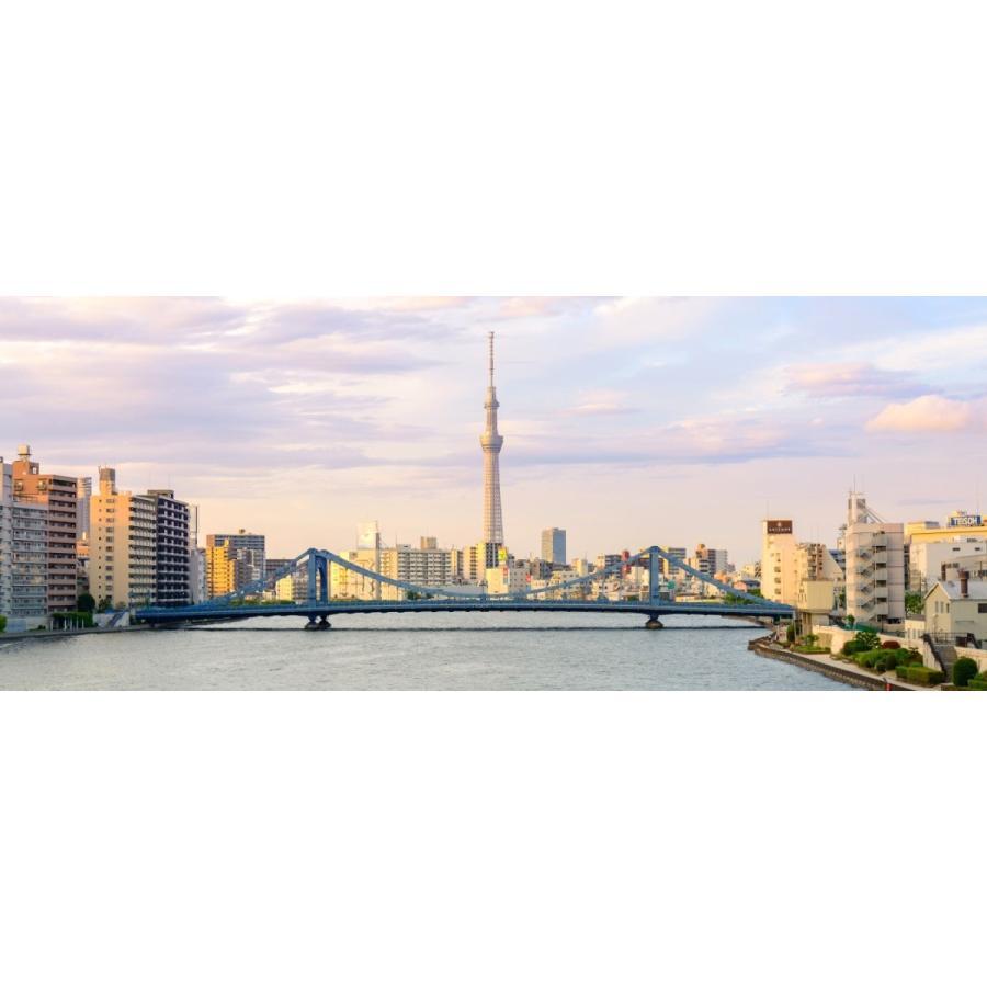 絵画風 壁紙ポスター 東京スカイツリーと清洲橋と隅田川 パステル