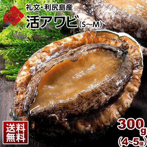 礼文・利尻島産 活アワビ 合計300g(4-5個) S~M