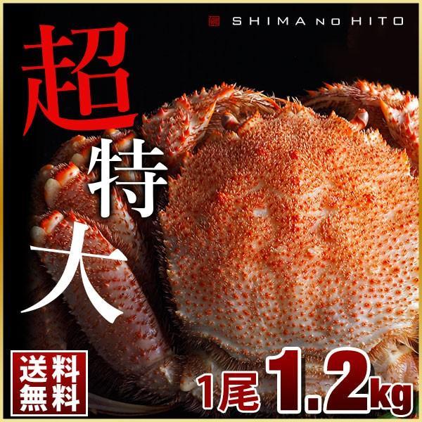 ロシア産 特大毛蟹 (姿) 1尾 900g