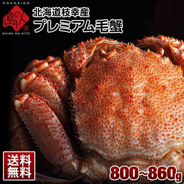 送料無料 北海道 枝幸産 プレミアム毛蟹  800~850g前後
