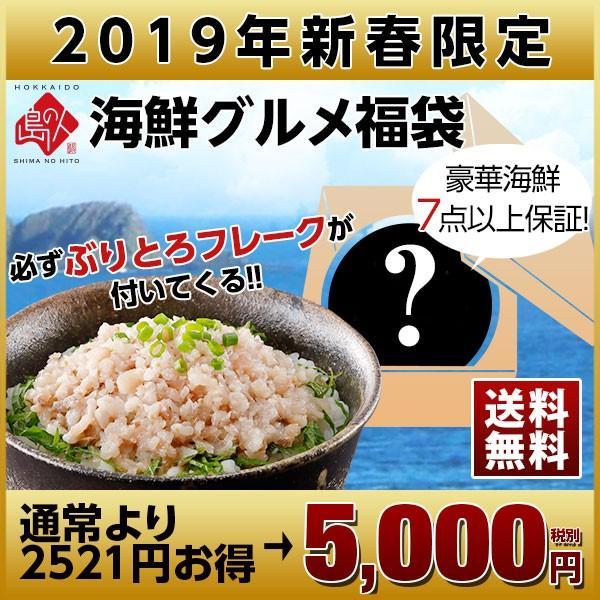 【送料無料】2019年新春「地中海産 本マグロ赤身」入り福袋