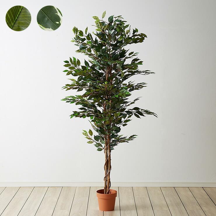 人工観葉植物 フィカス ハイタイプ ゴムの木 フェイクグリーン 当店限定販売 人気ブランド インテリアグリーン 観葉植物 人工 代引不可 フェイク グリーン 造花