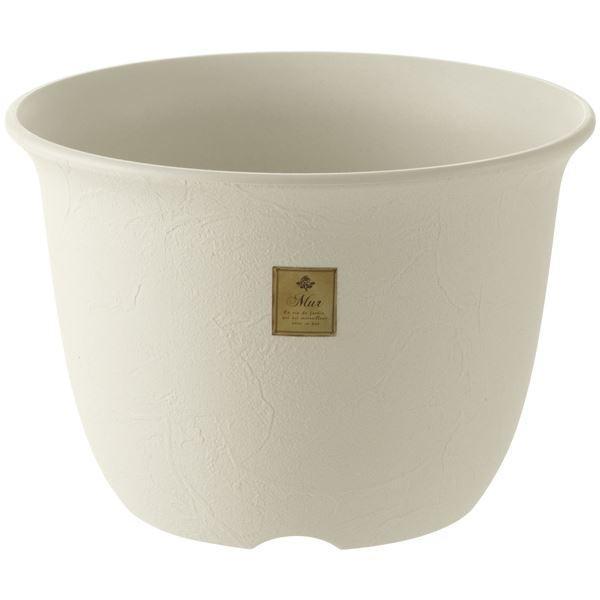 (まとめ) 植木鉢/ポット 〔5号 ホワイト〕 プラスチック製 ガーデニング用品 園芸 『ムール』 〔×60個セット〕