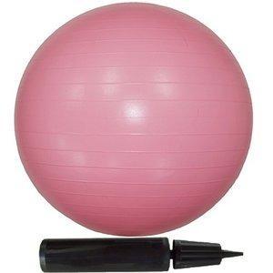 〔10個セット〕エクササイズボール 55cm ピンク