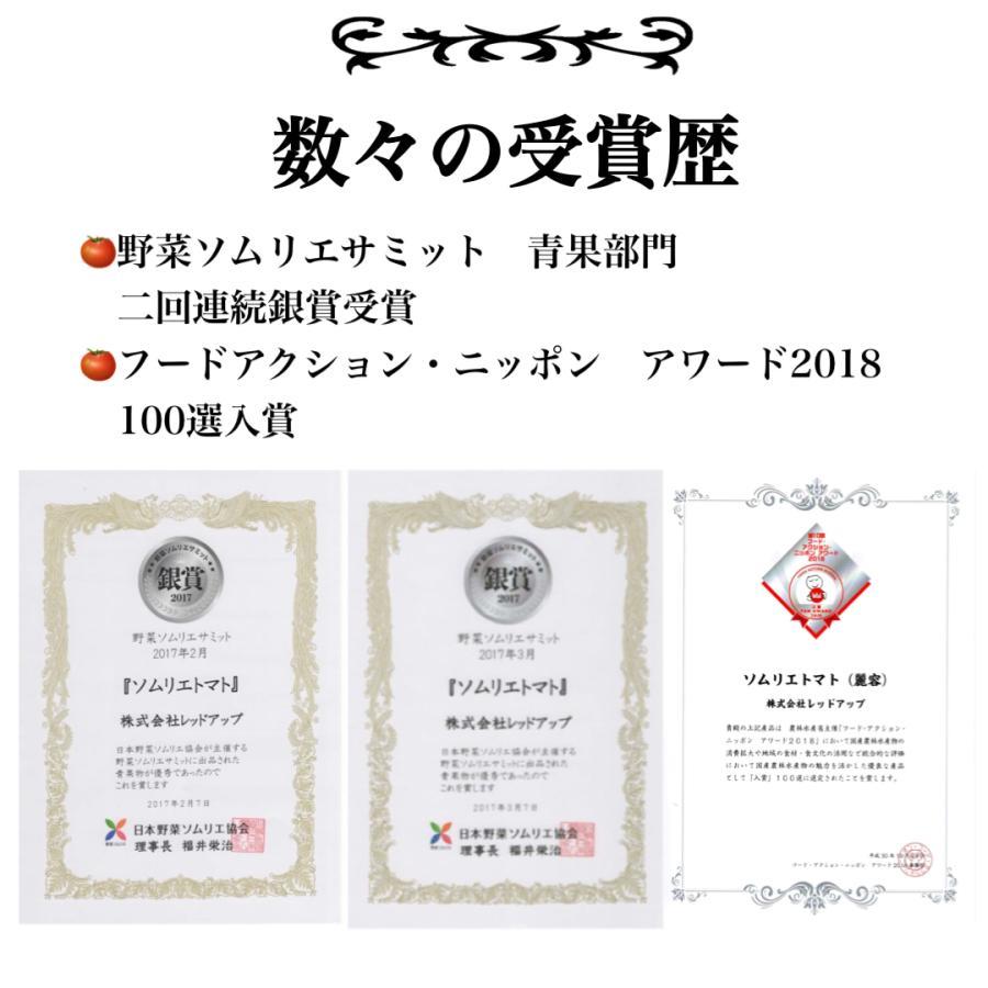 トマト 送料無料 九州 熊本産  ソムリエトマト 2.6kgもぎたてを順次発送 6月20日まで|redup|03