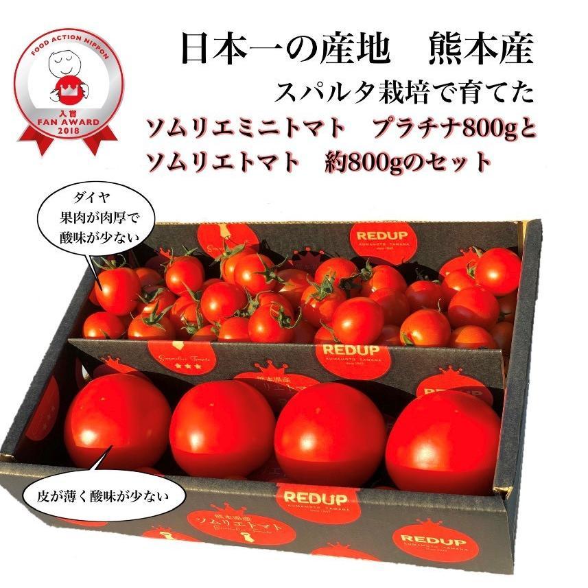 ソムリエミニトマト 1.5kg(100玉前後) 送料無料 九州 熊本産   もぎたてを順次発送 6月20日まで|redup