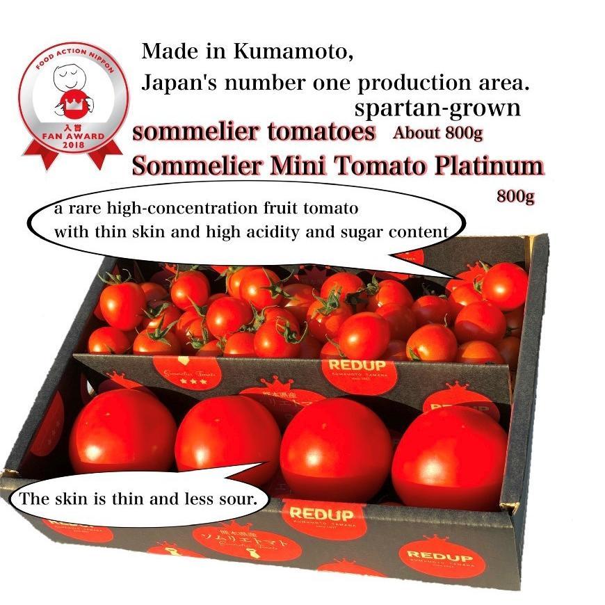 ソムリエミニトマト 1.5kg(100玉前後) 送料無料 九州 熊本産   もぎたてを順次発送 6月20日まで|redup|02