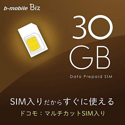 日本通信 b-mobile Biz SIMパッケージ(DC/マルチ)