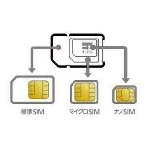 キャリア SIM 超大容量 prepaid DATA SIM (100GBプラン, 12ヶ月,SIMのみ)