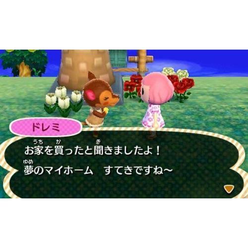 とびだせ どうぶつの森 - 3DS|relawer|06