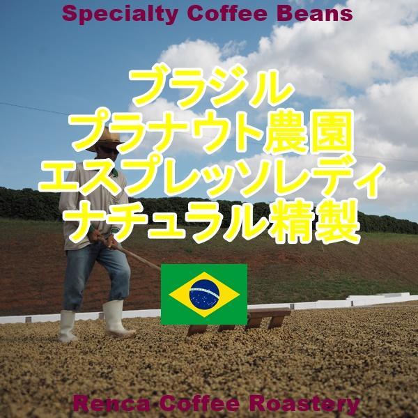 コーヒー豆 初回限定 お試し 送料無料 100gx4種類 深煎り 珈琲豆|rencacoffee|02