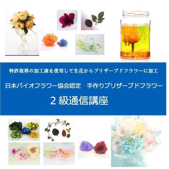 日本バイオフラワー協会認定 手作りプリザーブドフラワー 2級通信講座