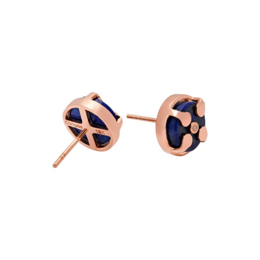 【アウトレット☆送料無料】 コングス & Stud Lapis レディース ピアス・イヤリング アクセサリー Congs Protection & Awareness Lapis Lazuli Stud Earrings, BellBreeze:6ad3de80 --- airmodconsu.dominiotemporario.com