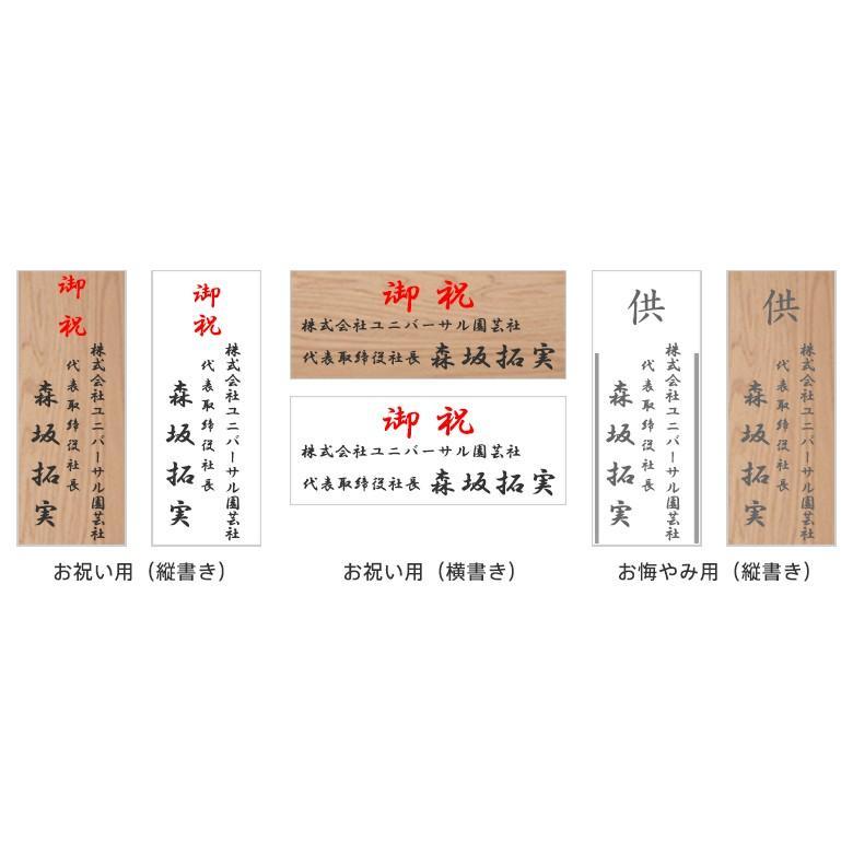 観葉植物 おしゃれ マングーカズラ 高さ:約150〜170cm 陶器鉢 ricochet-petit 03
