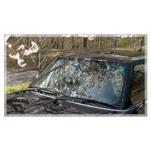 カーワックス 最強 液体 スプレー カーシャンプー 撥水 コーティング剤 車 業務用 洗車 ガラスコーティング 水垢 リピカ ( コーティングカーシャンプー 500ml )|ripicar|06